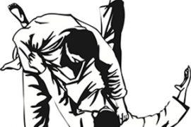 De Judomeester