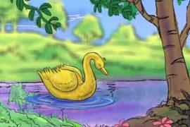 De gouden zwaan
